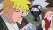 La determinazione del ninja