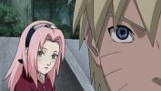I sentimenti di Sakura