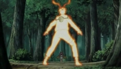 Naruto-Shippuuden-episode-315-screenshot-002.jpg